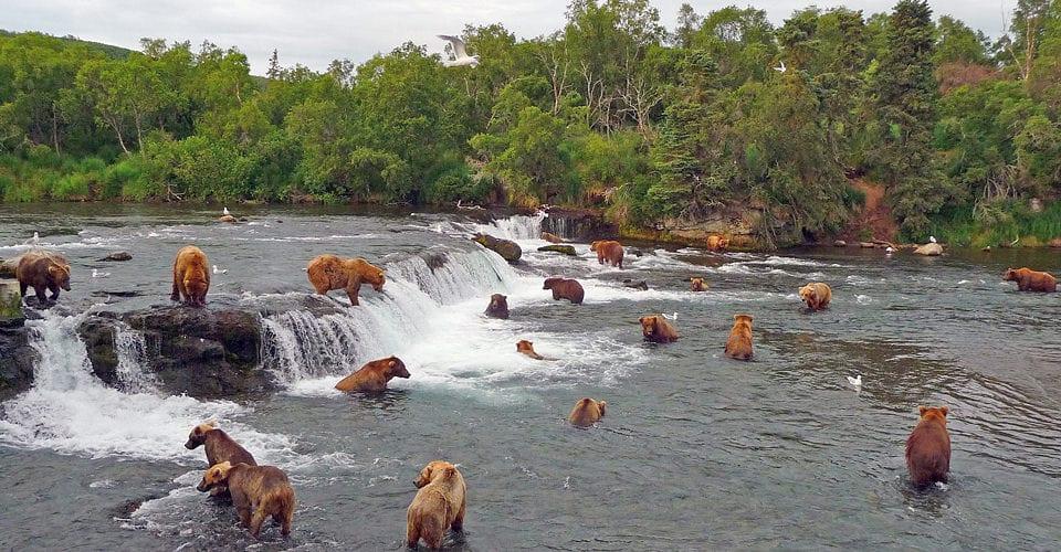 پارک ملی و منطقه حفاظت شده کاتمای