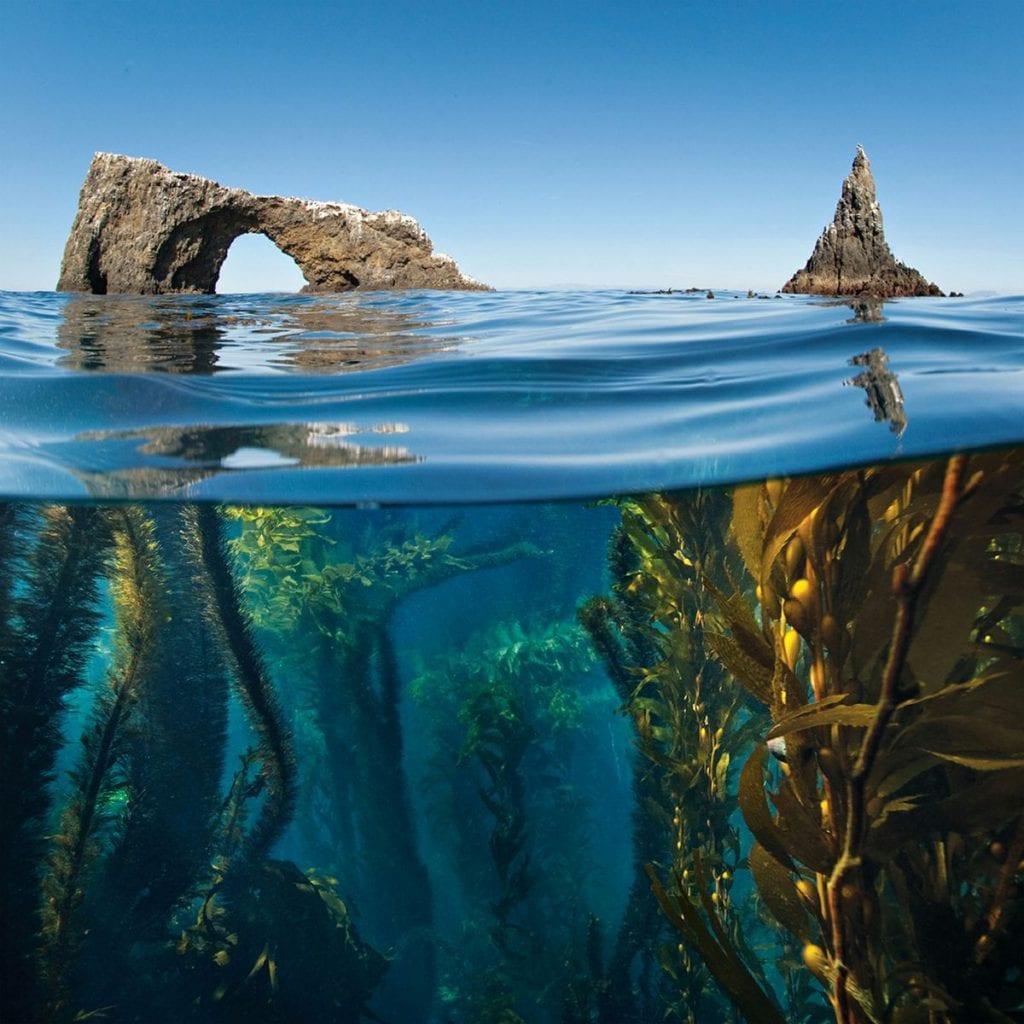 پارک ملی جزایر چنل
